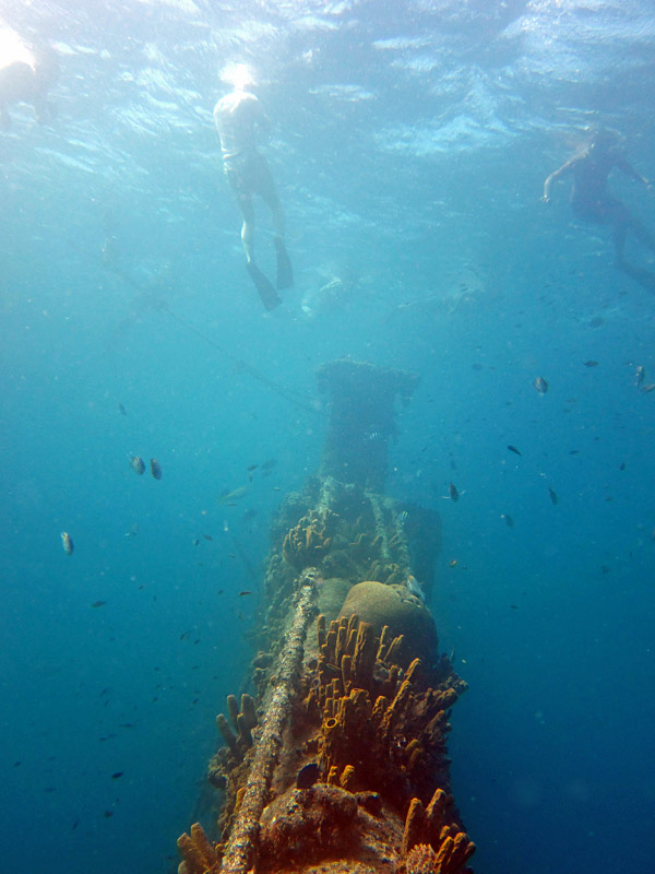 Snorkelers at the Antilla Wreck