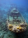 Stern of the Tugboat covered in corals