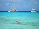 Snorkeling Boat Tours