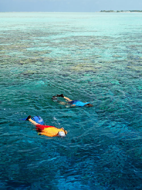 Maldives snorkelers enjoying the reef and sea life.