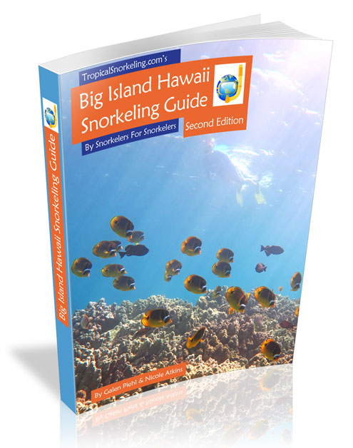 Big Island Snorkeling Guide eBook