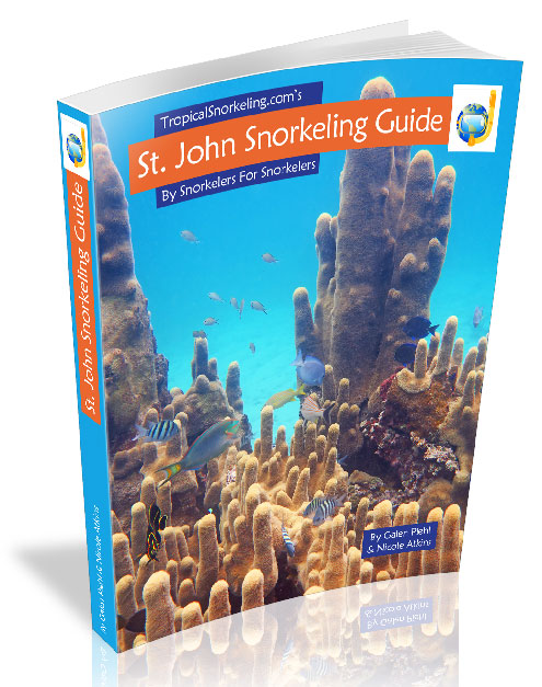 St John Snorkeling Guide eBook
