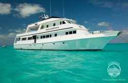 Learn all about this Belize Liveaboard snorkeling trip.
