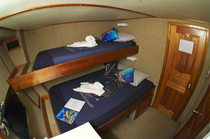 Your accommodations aboard the Belize Aggressor III.