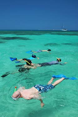 Snorkelers in the Florida Keys