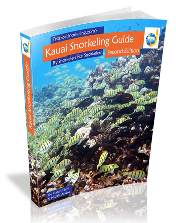 Kauai Snorkeling Guide eBook