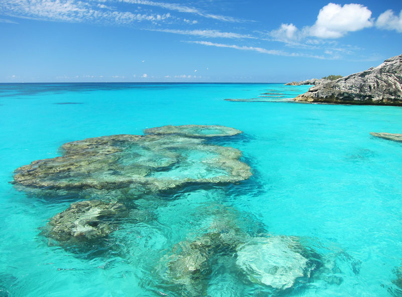 Best Beaches In Bermuda Map Recommended Bermuda Snorkeling Beaches & Boat Tours
