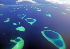The gorgeous atolls of the Maldives. Abundant snorkeling options.