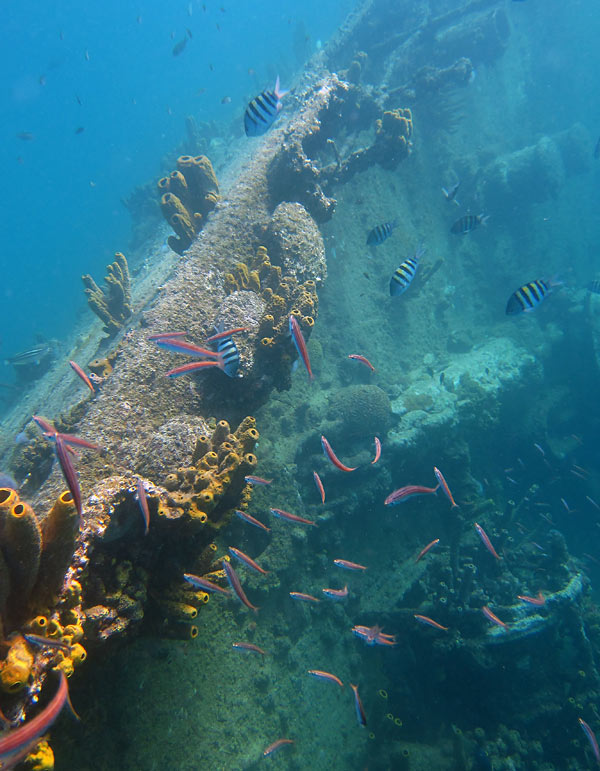 Port Rail Of The Antilla Wreck