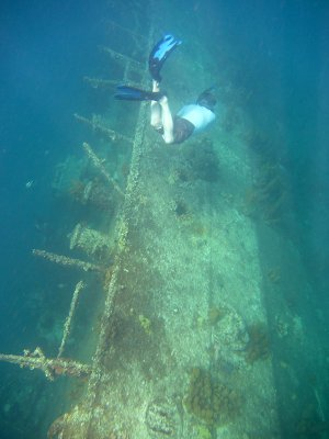 Snorkeling The Antilla Wreck