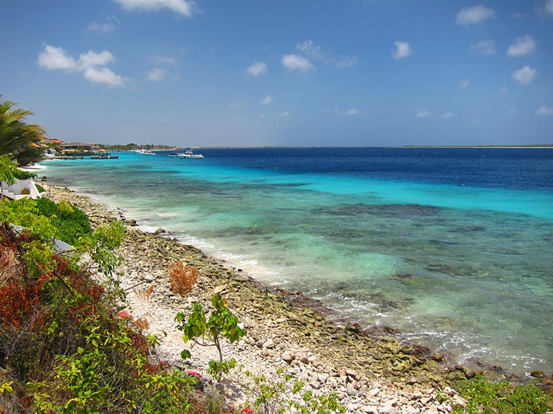 Shore Access To Beautiful Bonaire Waters