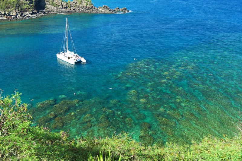 Overview of snorkeling Honolua Bay, including a tour boat.