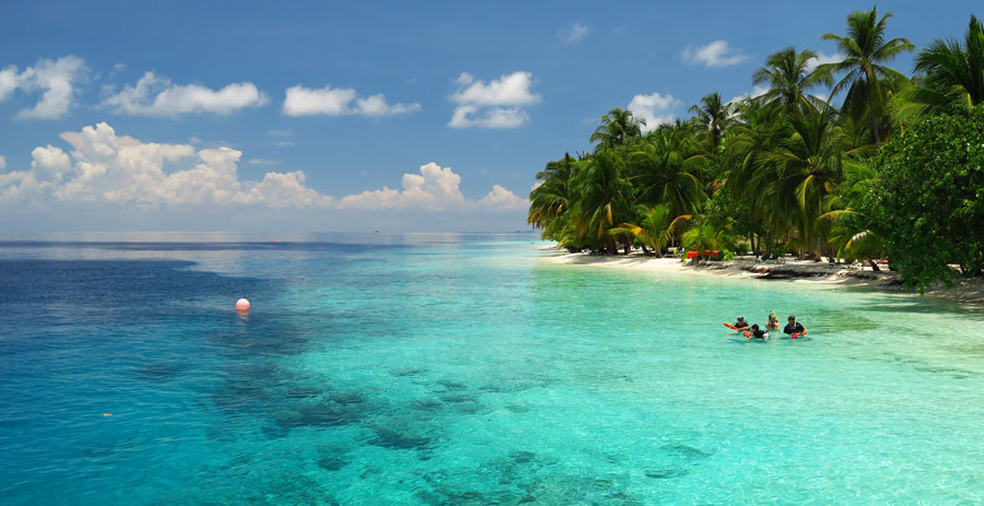 Maldives snorkeling resorts offer gorgeous beaches and house reefs.