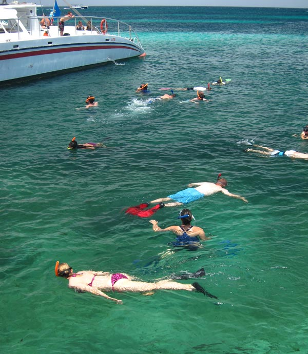 Complete Aruba Snorkeling Guide Recommended Beaches Tours