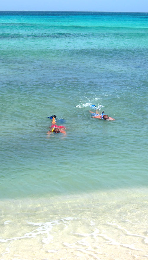Snorkelers having fun in Aruba