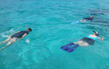 Snorkelers at Mexico Rocks - Belize