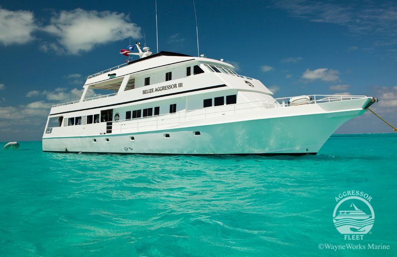 The Belize Aggressor III will be your liveaboard home for this Belize snorkeling trip.