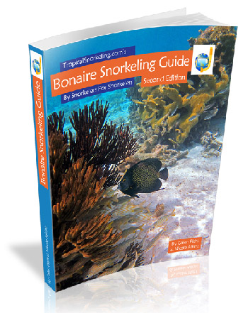 Bonaire Snorkeling Guide eBook