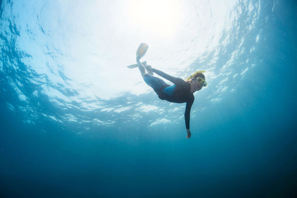 Freediving gets you down to where you can get the best pictures.