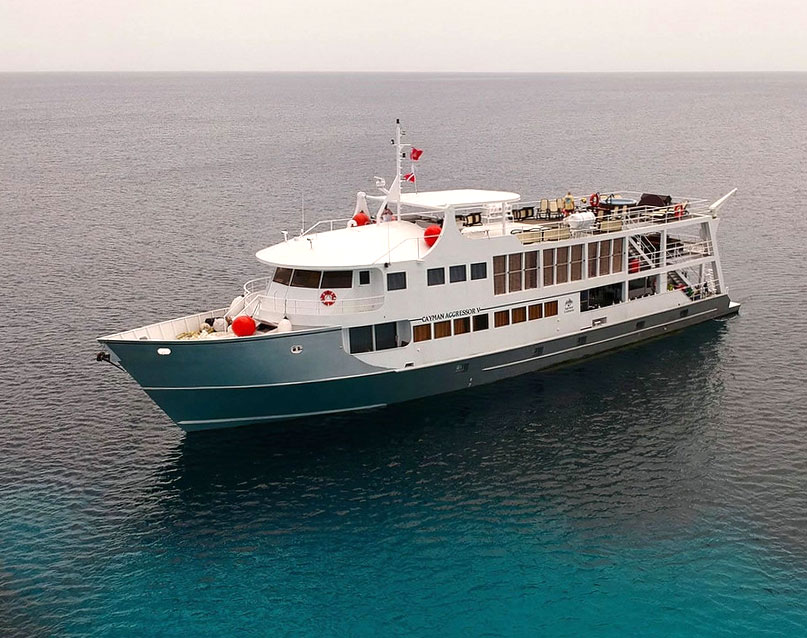 The Cayman Aggressor V Liveaboard is your home base for this workshop snorkeling trip.