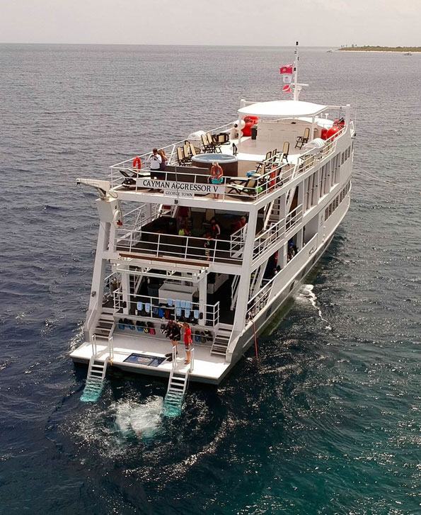 Ladders from the boat will provide your access to and from the water on this liveaboard snorkeling trip.