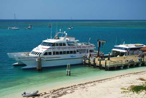 Snorkeling Dry Tortugas Ferry
