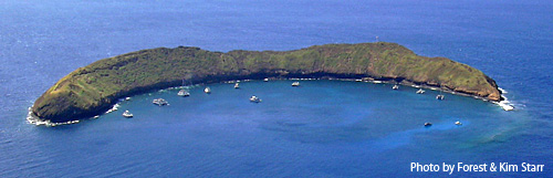 Molokini from the air