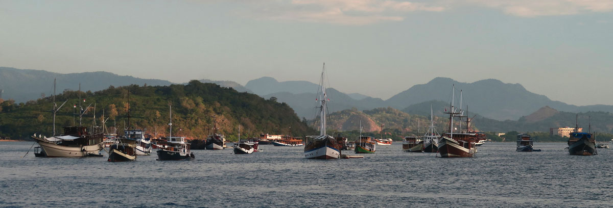 The bay in front of Labuan Bajo was simply packed with boats anchored out.
