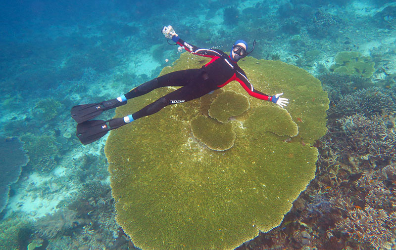 Galen hovering over a massive table coral on the north end of the house reef at Komodo Resort.