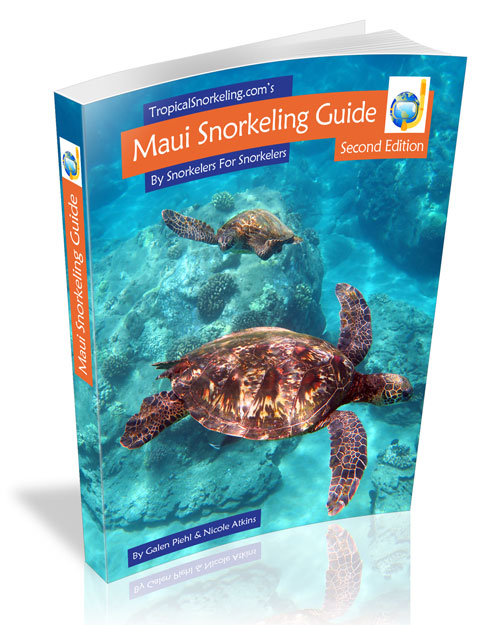 Maui Snorkeling Guide eBook