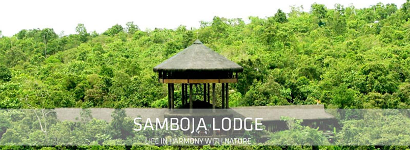 Samboja Lodge is a two night side trip to view some wildlife of Borneo.