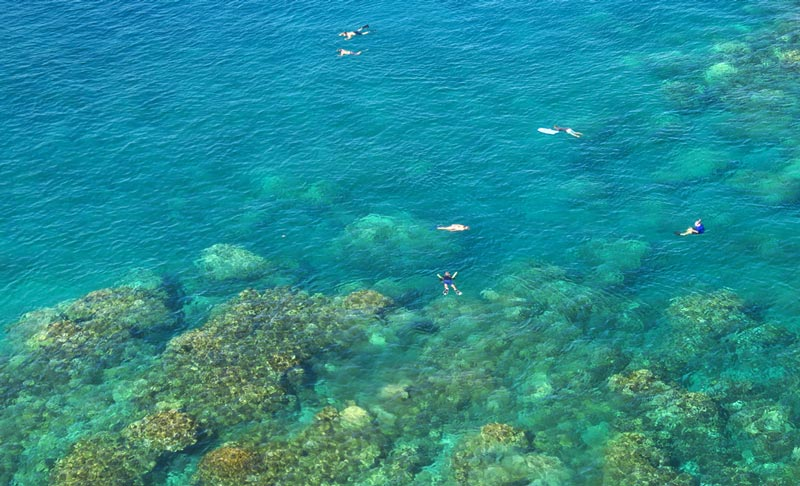 Snorkeling Honolua Bay - Worth The Drive, Hike And Long Swim