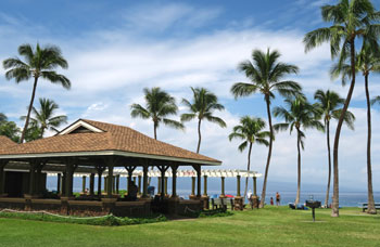 A pavilion, picnic tables, barbecues, a grassy field. Some of the nice amenities available at Kahekili Beach.