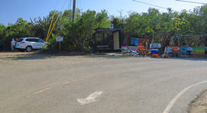 Bus stop and vendor at Salt Pond Bay parking lot