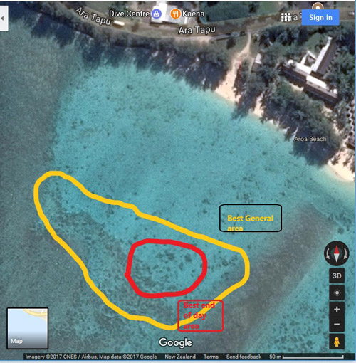 Aro'a Beach, Rarotonga, Cook Islands Map - Best General Snorkeling Area in Yellow, Best End of Day Area in Red - Scale 50m