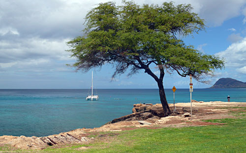Snorkeling Kahe Point is accessible from shore or boat tour
