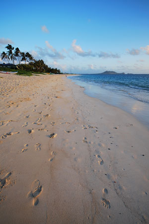 Gorgeous Lanikai Beach At Sunrise
