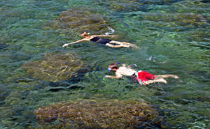 Snorkelers in Sharks Cove