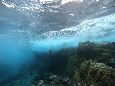 Be aware of currents while snorkeling in Niue