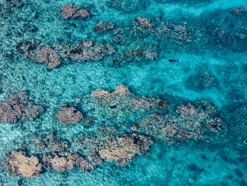 There are endless shallow patch reefs to explore in Belize.