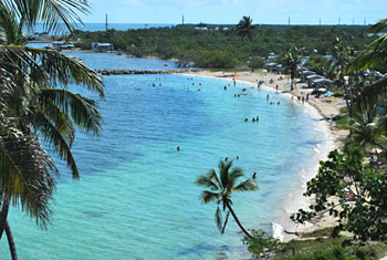 Bahia Honda Snorkeling Beach - Bay Side