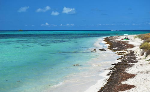 Bahia Honda Snorkeling Beach - Atlantic Side