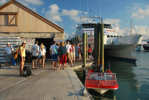 Key West Snorkeling: Dry Tortugas Ferry