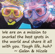 Read more about Galen & Nicole