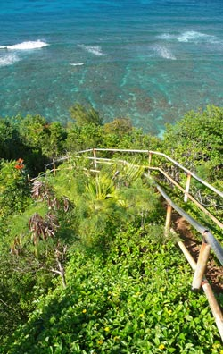 Top of the trail you hike down a steep hill to snorkel at Hideaways Beach.
