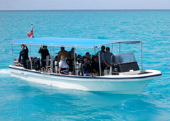 All snorkeling spots will be accessed from this skiff, that is capable of holding everyone onboard.