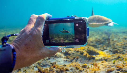 iPhone Snorkeling Housing