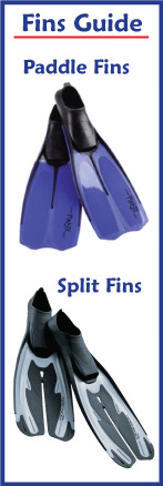 Split vs Paddle Fins
