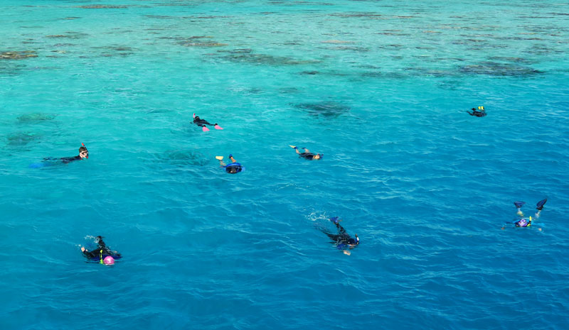 Group snorkeling trips are fun!