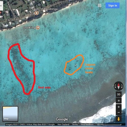 Fruits of Rarotonga Cook Islands Map - Best Snorkeling Area in Red, Lagoon Cruise Boats in Orange - Scale 100m